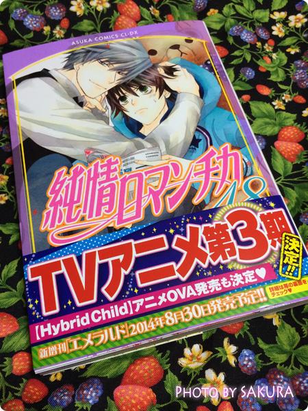 中村春菊「純情ロマンチカ (18) (あすかコミックスCL-DX)」